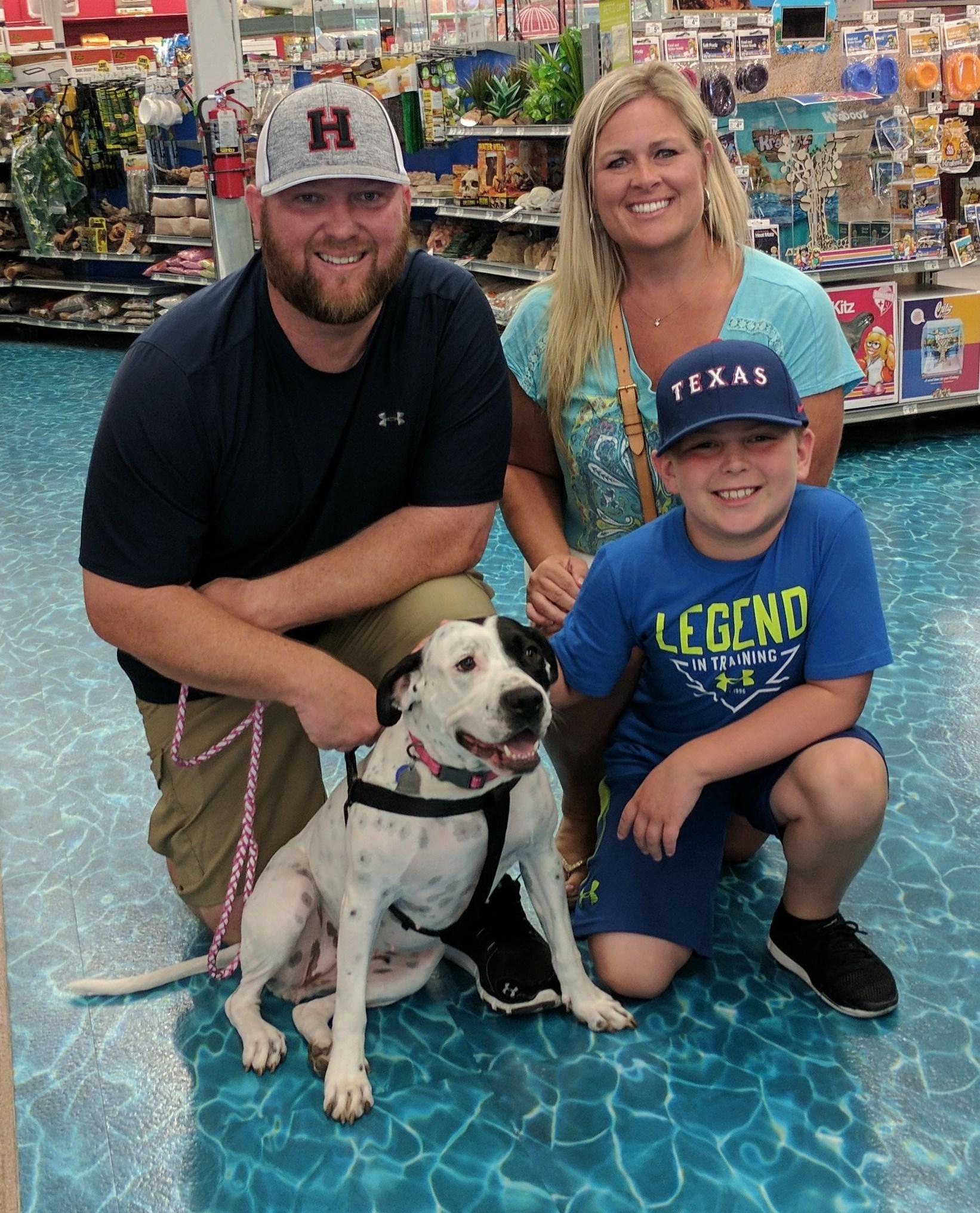 Carlie Adoption