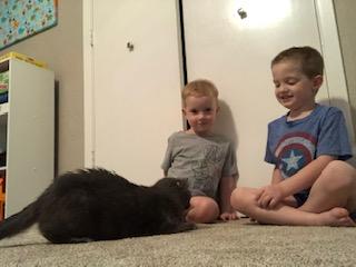 Katerina Adoption